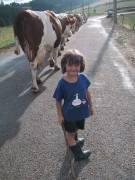 Devenez vacher !